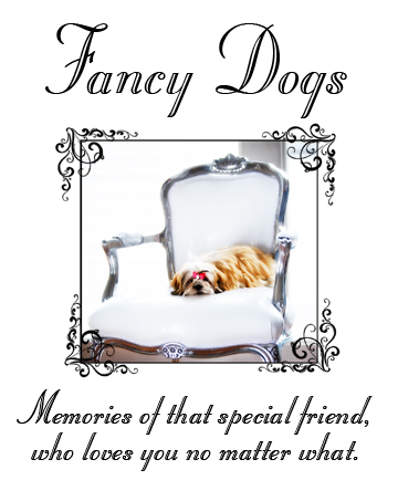 Dogspecial3
